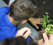 Community Center Gardening Kids Planting