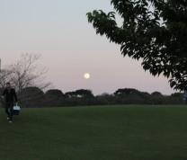 Curitiba Park