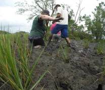 International Service Learning Mud Flats Time