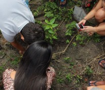 International Service Learning Plantation