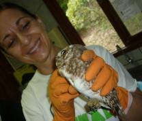Wildlife Conservation Owl